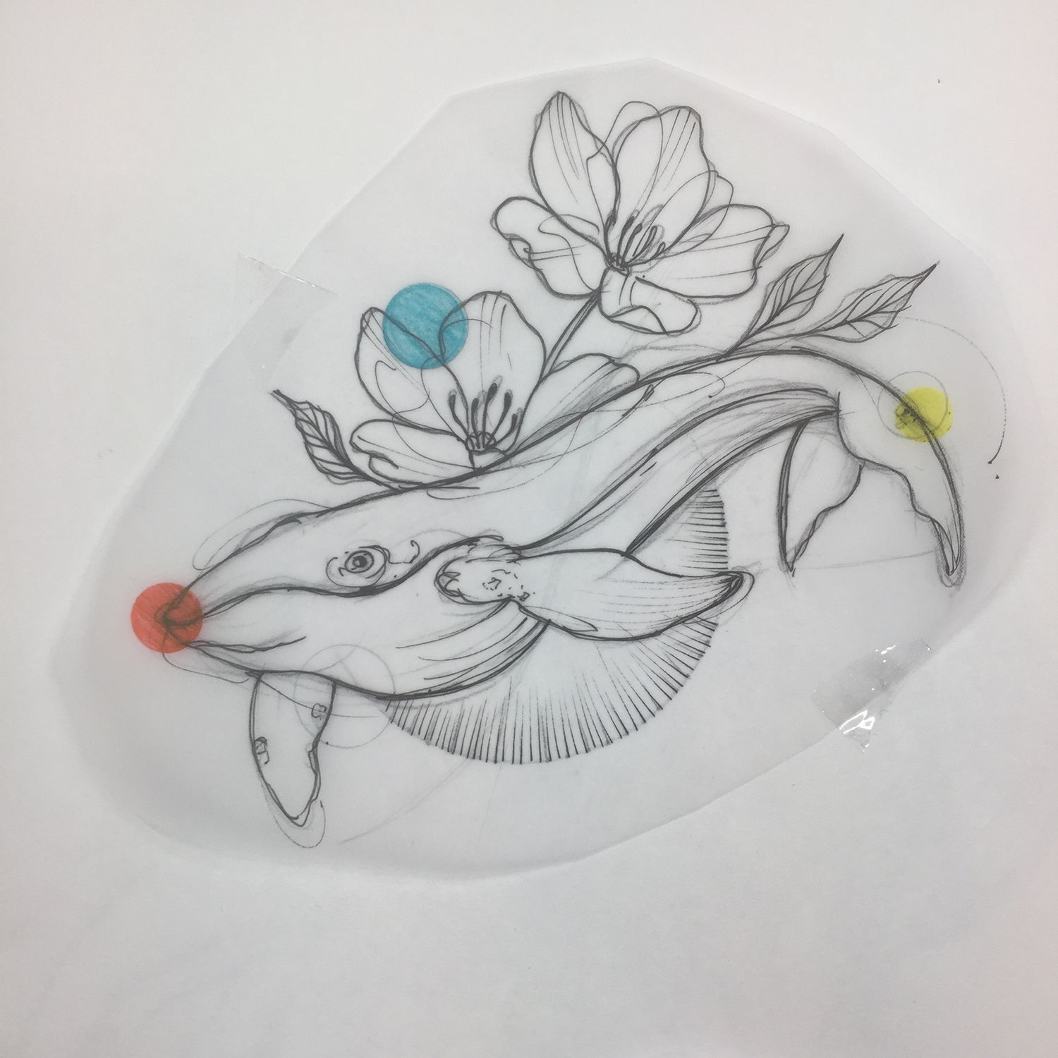 whale tattoo drawing