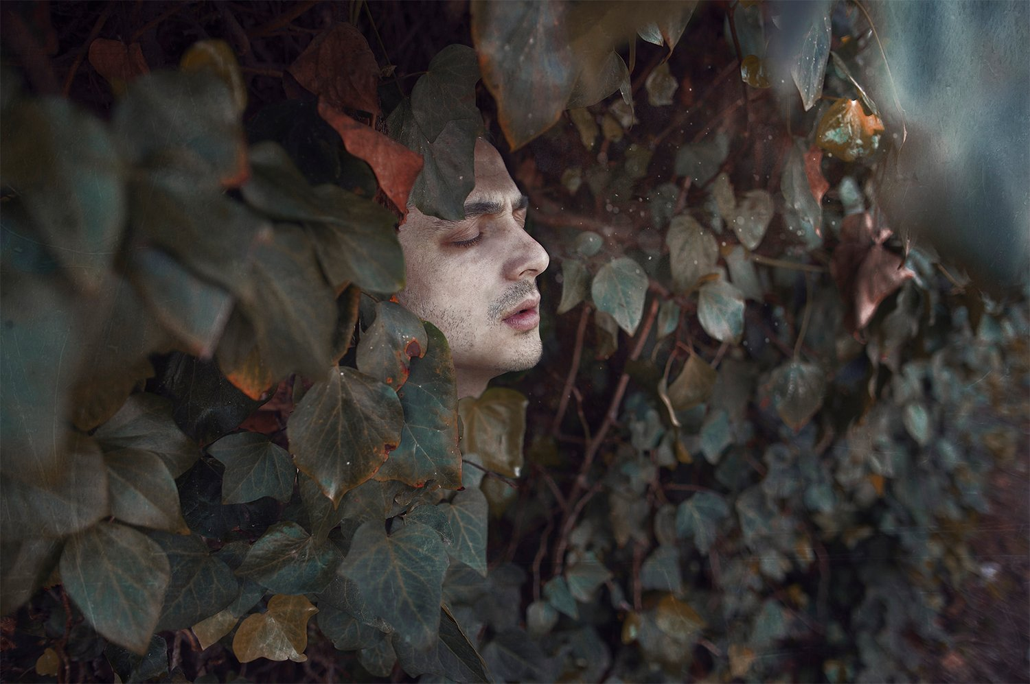 face in vegetation, photography