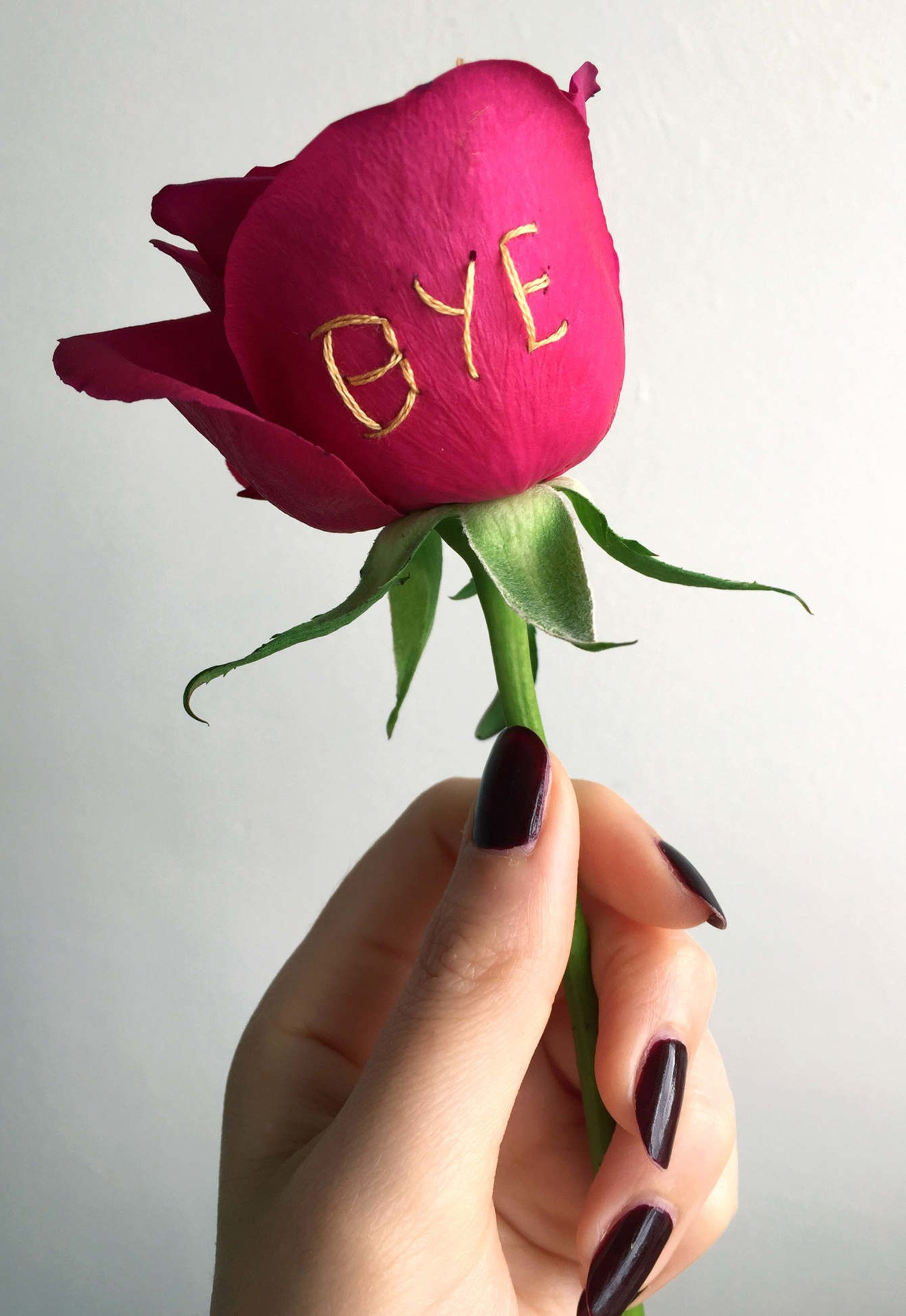 bye embroidery on red rose