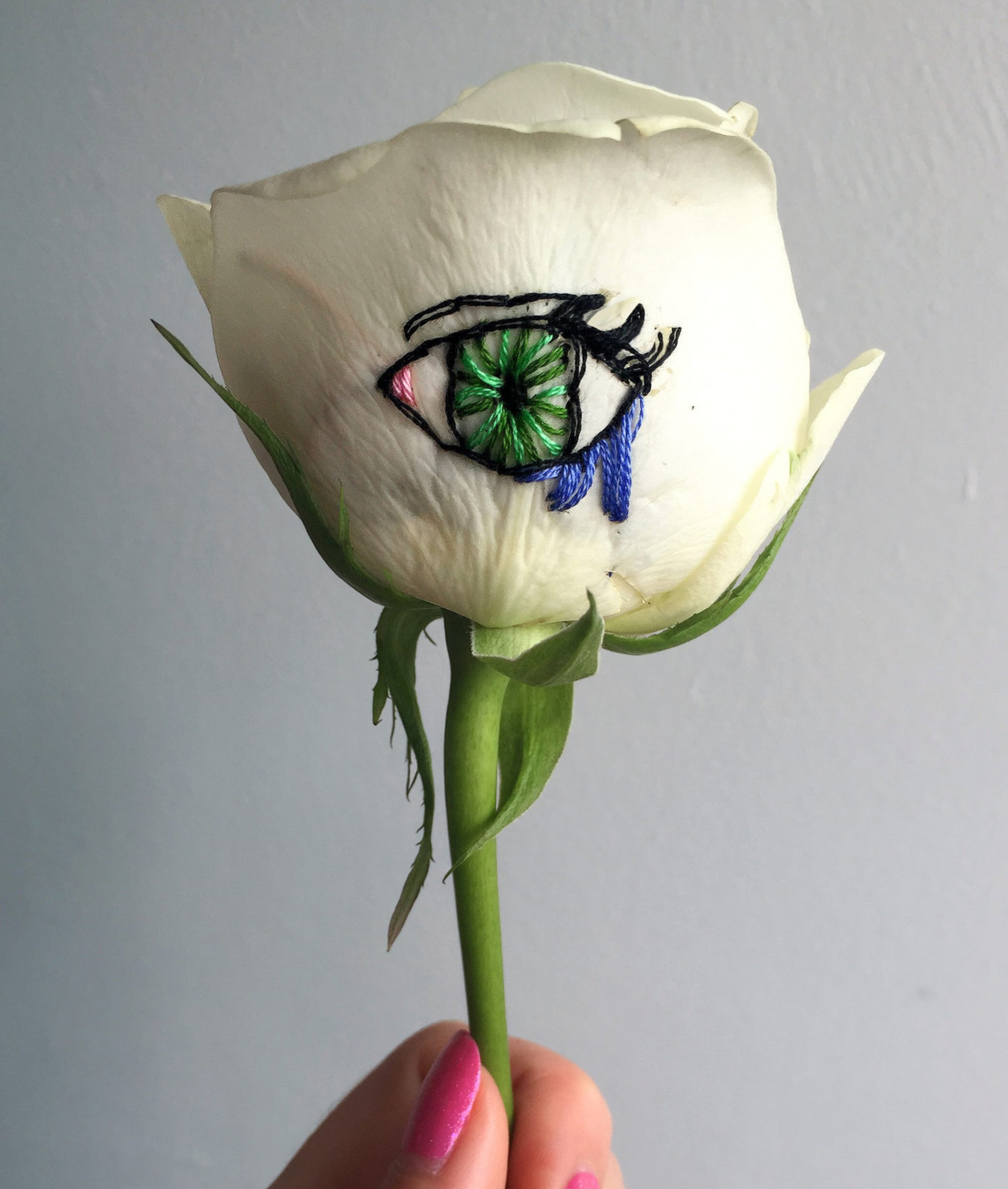 eye embroidery on rose