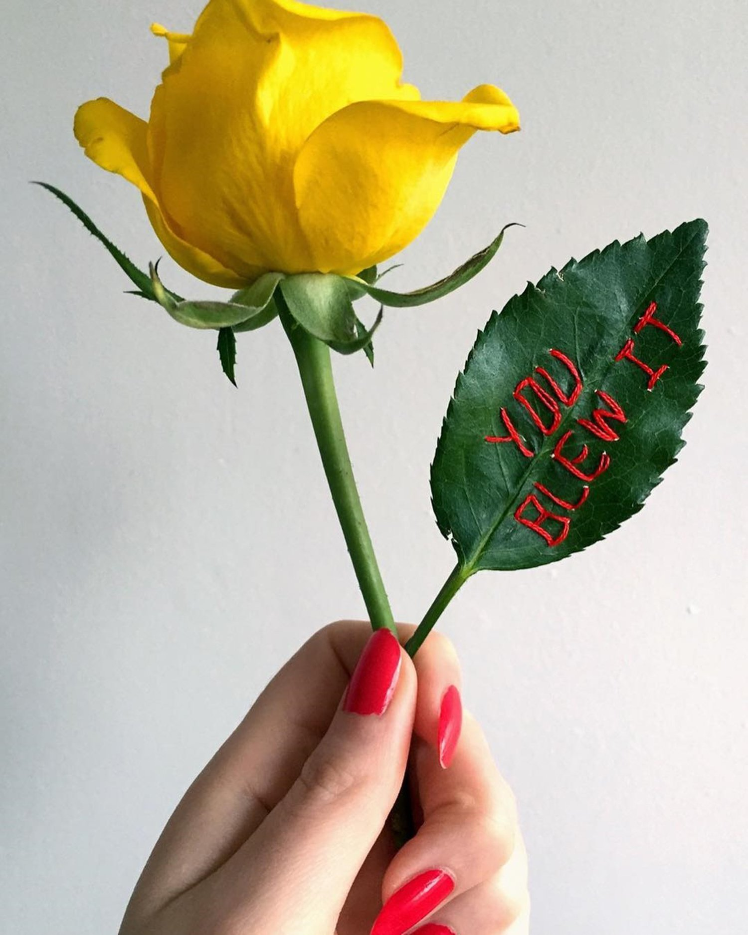 embroidery on flower, rose