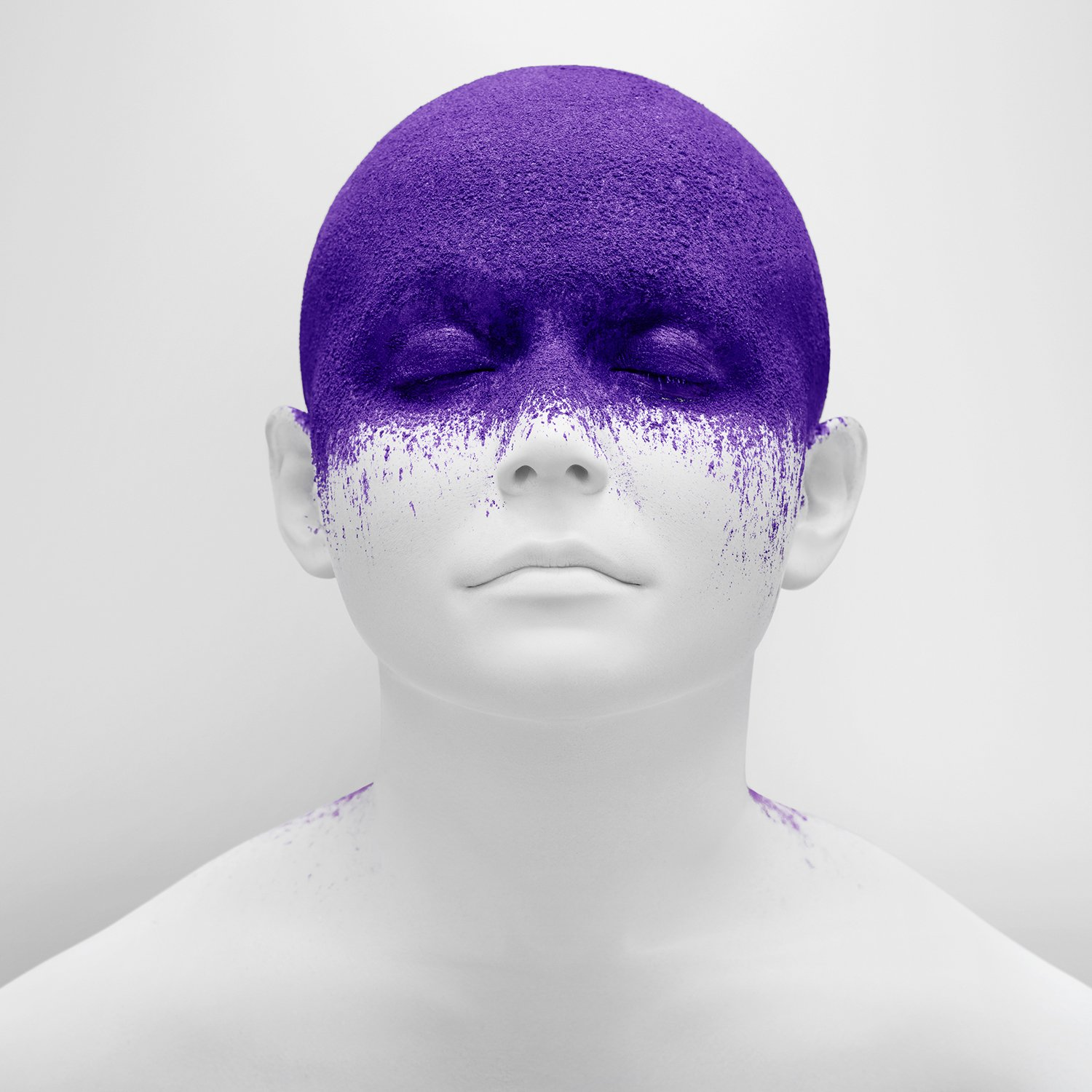 united states of purple, series by tim tadder