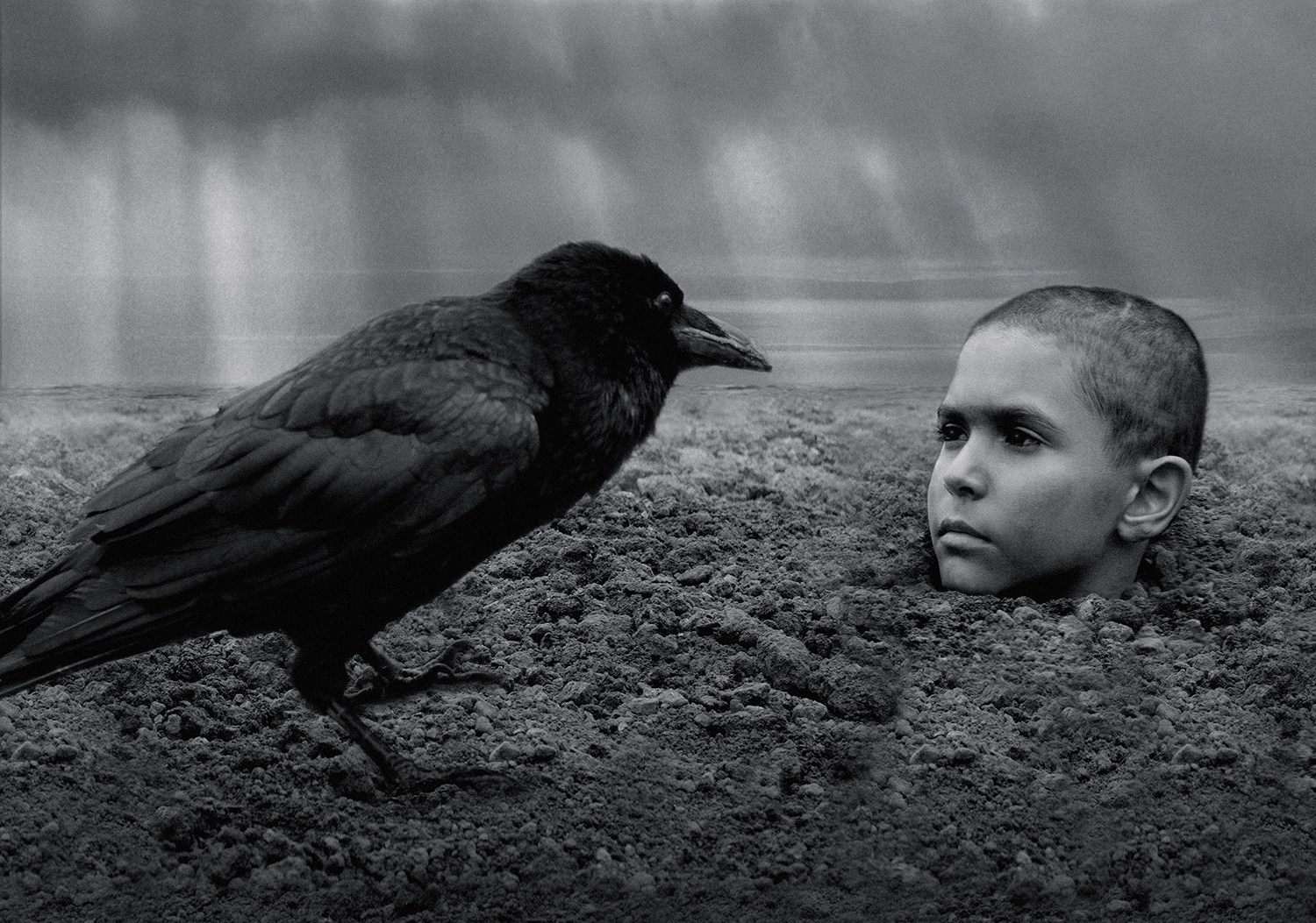 boy and crow, the painted bird movie