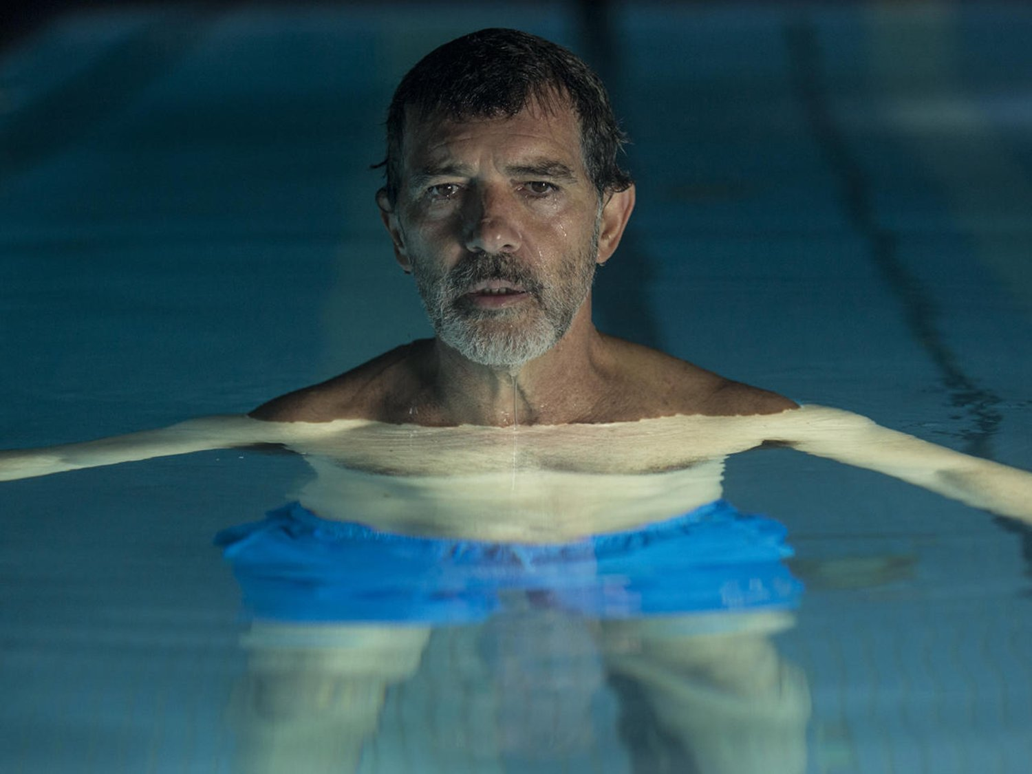 anthony banderras in pool, pain and glory movie, best films of 2019