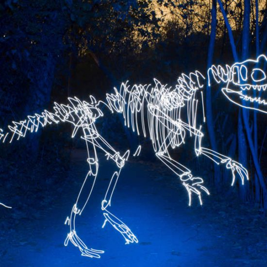Light Painting: Dinos, Aliens, and Skaters