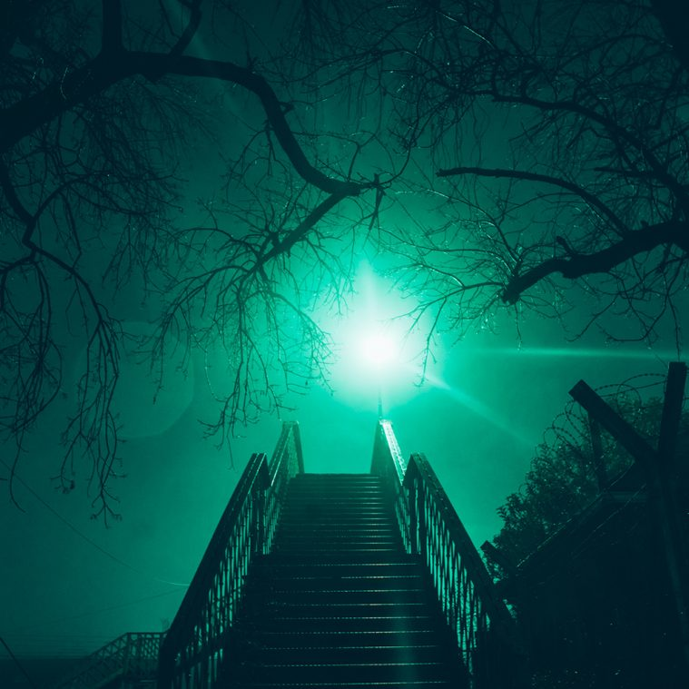 Midnight's Illumination: Night Photography by Elsa Bleda