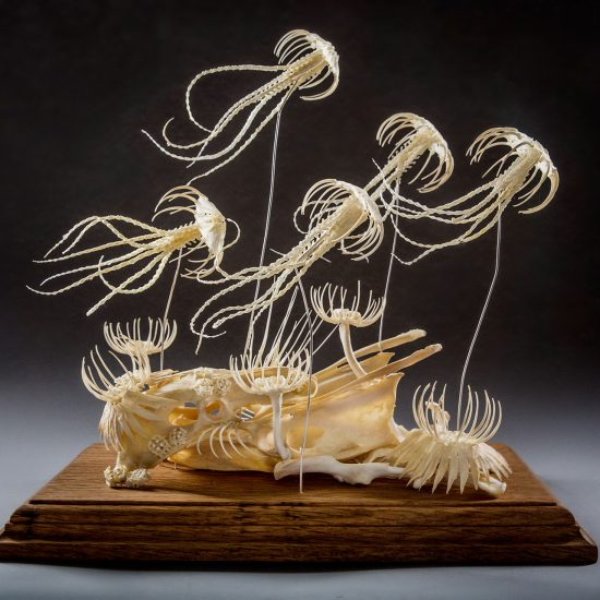 Curious Rebirth: Magical Taxidermy Sculptures by Gerard Geer