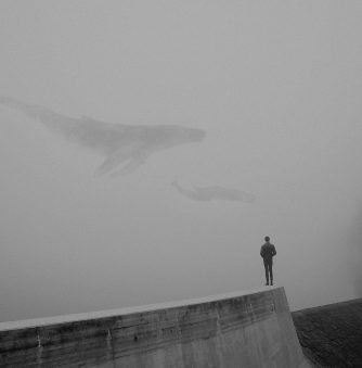 Foggy, Dream-like Visions by Martin Vlach