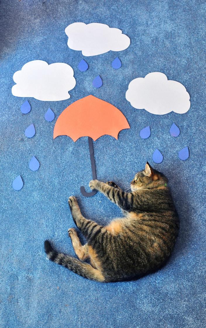 kittycat_02
