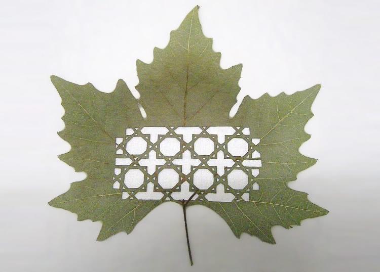 leafartcut_04