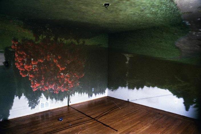 Art installation by Nizam