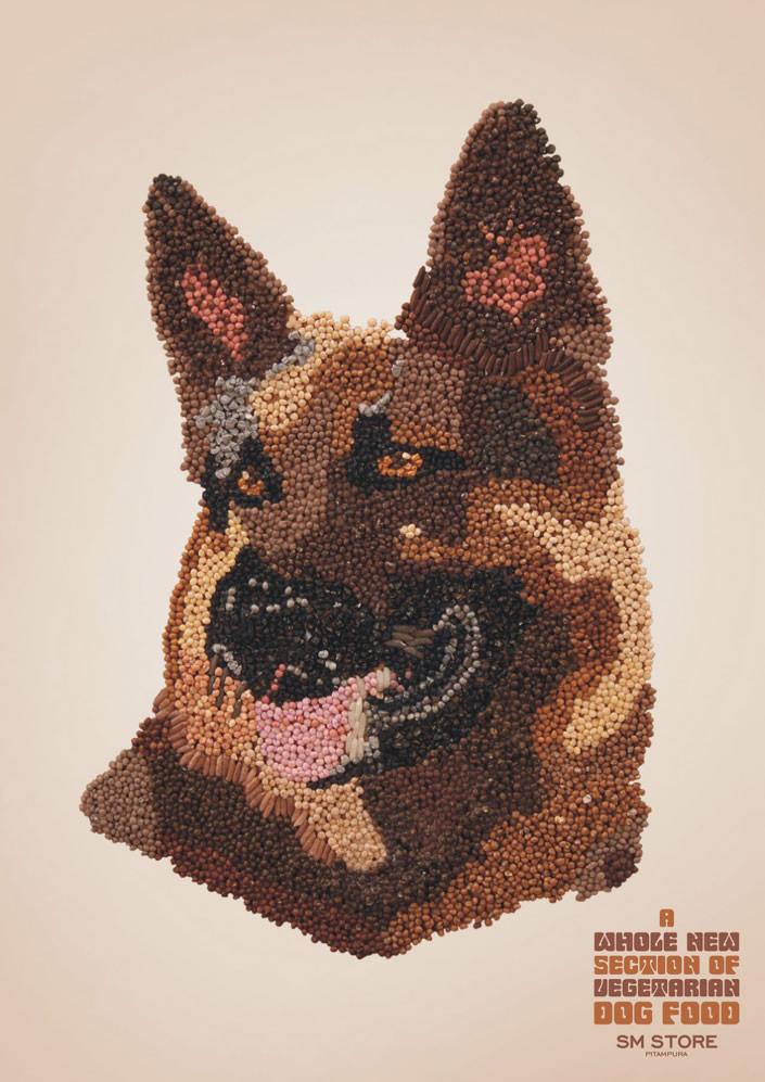 smstore_dog4